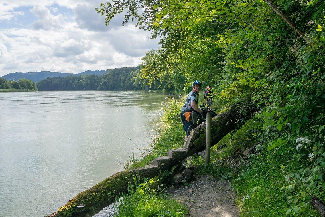 Enge Trails am Schweizer Rheinufer
