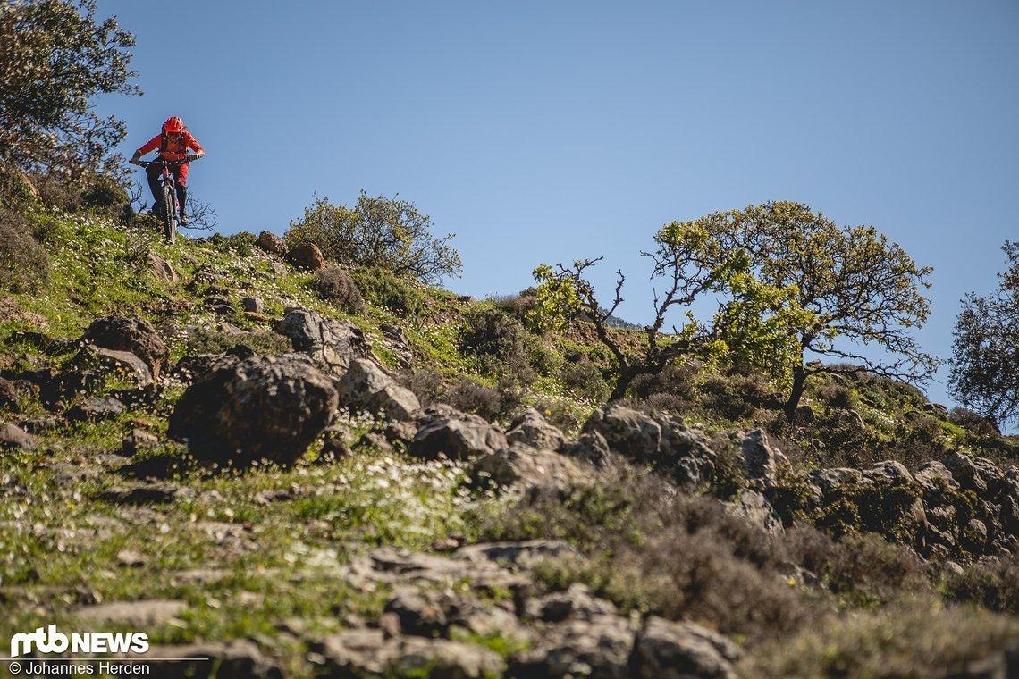 ...und Felix starten in den Trail und rumpeln über die Felsen