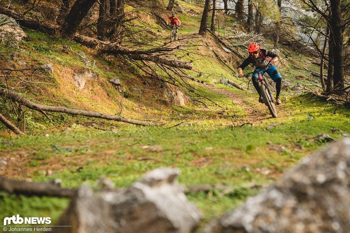 Eukalyptus-Duft und ein schneller, überaus flowiger Trail bergab. Hammer!