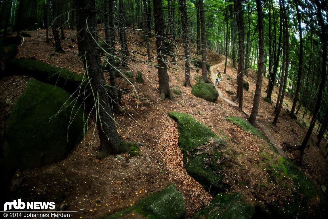 Große Felsen, sphärischer Wald, nichts los, trockene Trails