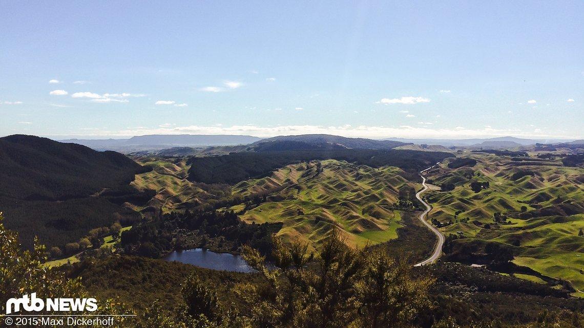 Zurück nach Rotorua