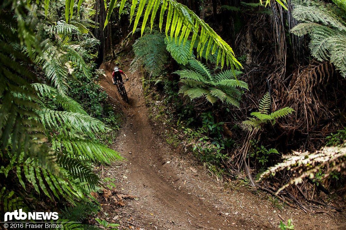 Crankworx NZ 3522