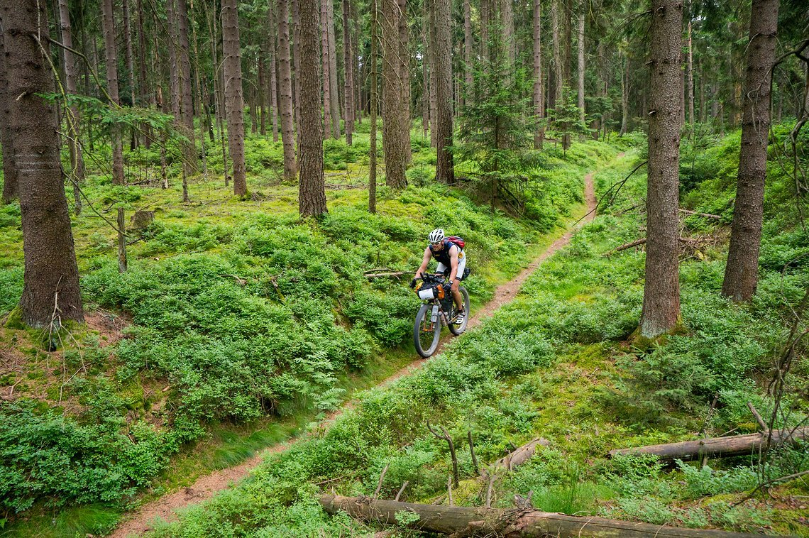 Trail durch das Fichtelgebirge