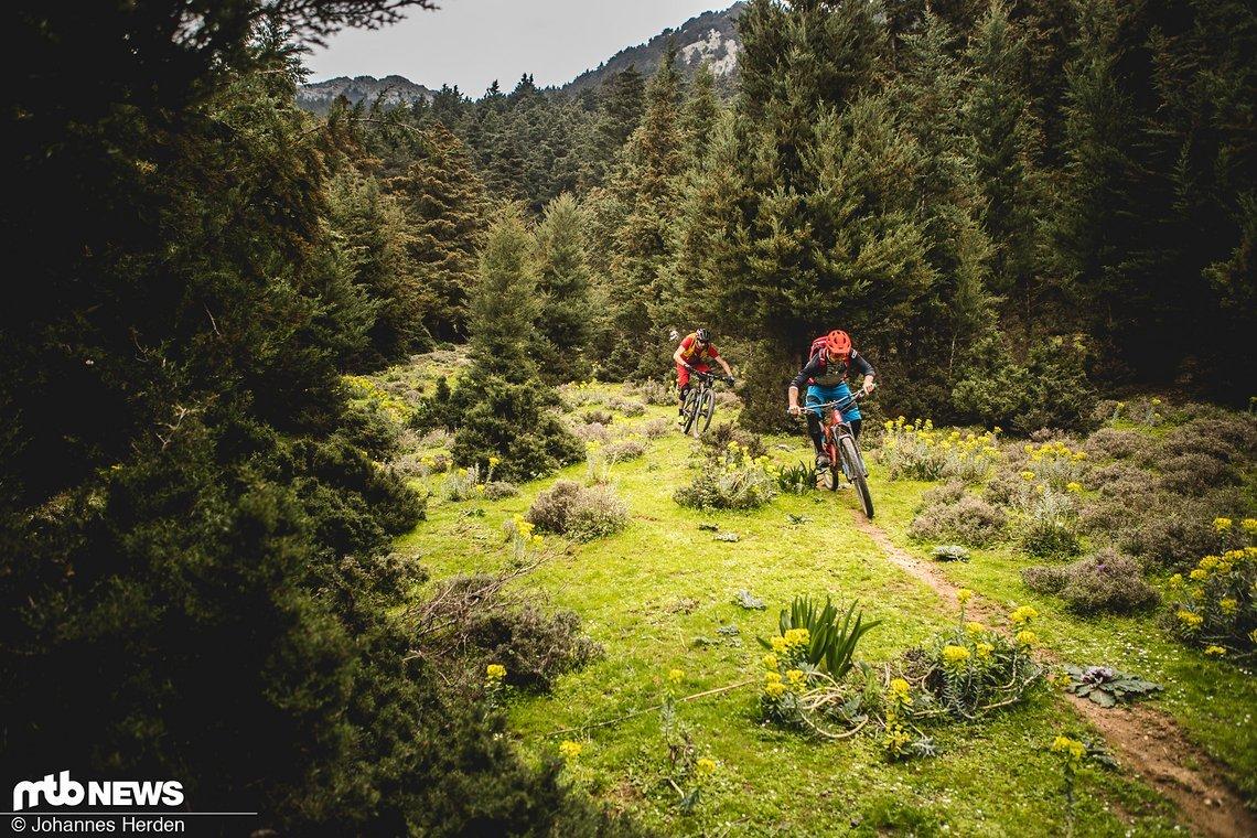 Auf unserer Explorer-Tour entdecken wir einige feine Trails, die sogleich befahren werden!