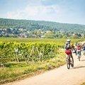 Season Opener Pfalz: Frühlingshaftes Flow- und Genusswochenende (2,5-tägig)