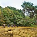 MTB-Trailcross 'Grenzgänger' – das niederländische Bike-Erlebnis (3-tägig)