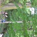 12. Aspen-MTB-Marathon