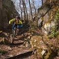 MTB-Fahrtechnikkurs 'Trail & Ride 3' – Modul Trail-/Endurotechnik