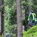 Trailhouse Bayerischer Wald Donaukamm