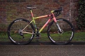 Squid Bikes Farbschema 4