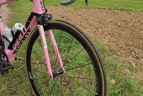 Giant TCR Advanced - Giro --6