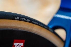 Reifen von Wolfpack – der Marke von Reifenpabst Wolfgang Arenz