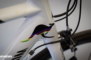 TdF Bikes der Pros II-84
