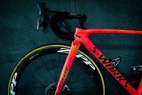 Das Specialized Roubaix besitzt eine Vorbaufederung mit 20 mm Federweg