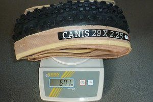 Canis Skinwall