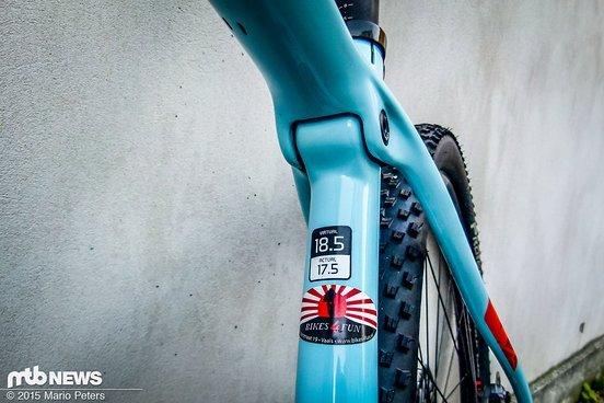 Das IsoSpeed-Gelenk kennt man bereits aus dem Rennrad-Bereich