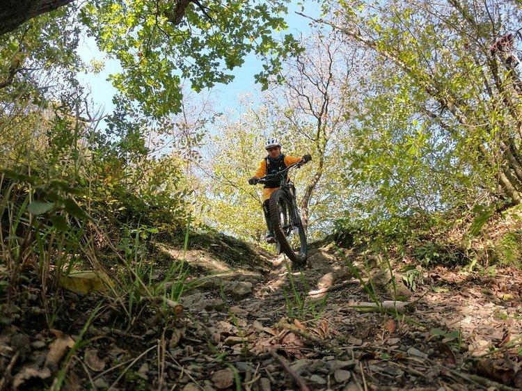 Hangtrails, Höhenpfade und Traum-Weitblicke – MTB-Camp 'Best of Mosel-Flowtrails'