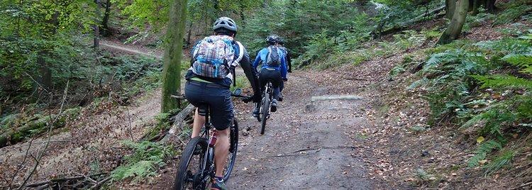 MTB Singletrail Tour Haard im Naturpark Hohe Mark