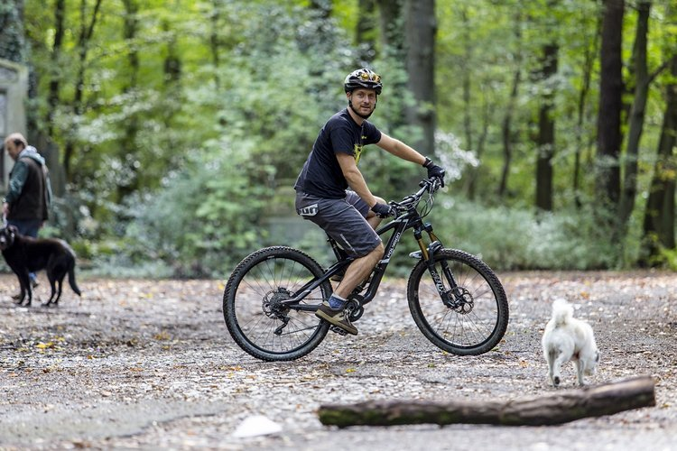 Marc mit Traildog Biggi