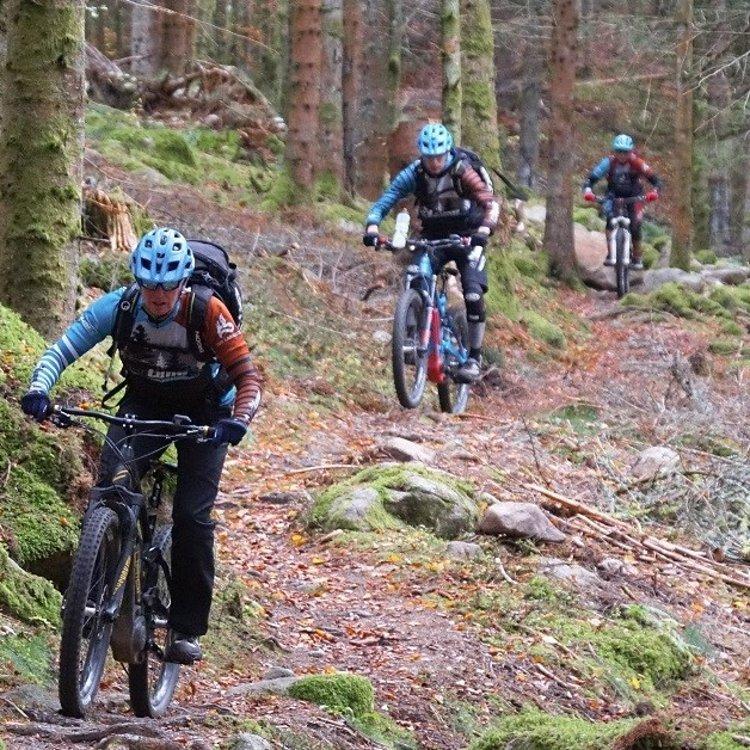 beitune Trailcamp Nordvogesen