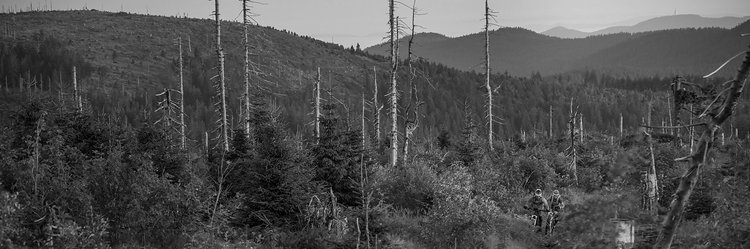 Trailhouse Bayerischer Wald Arberkamm