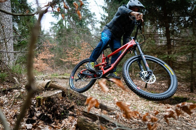 Was tun in den Ferien ? Jugend / Kids Mountainbike Workshop Harburger Berge